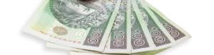 zloty finanse przedsiebiorcy pl 319